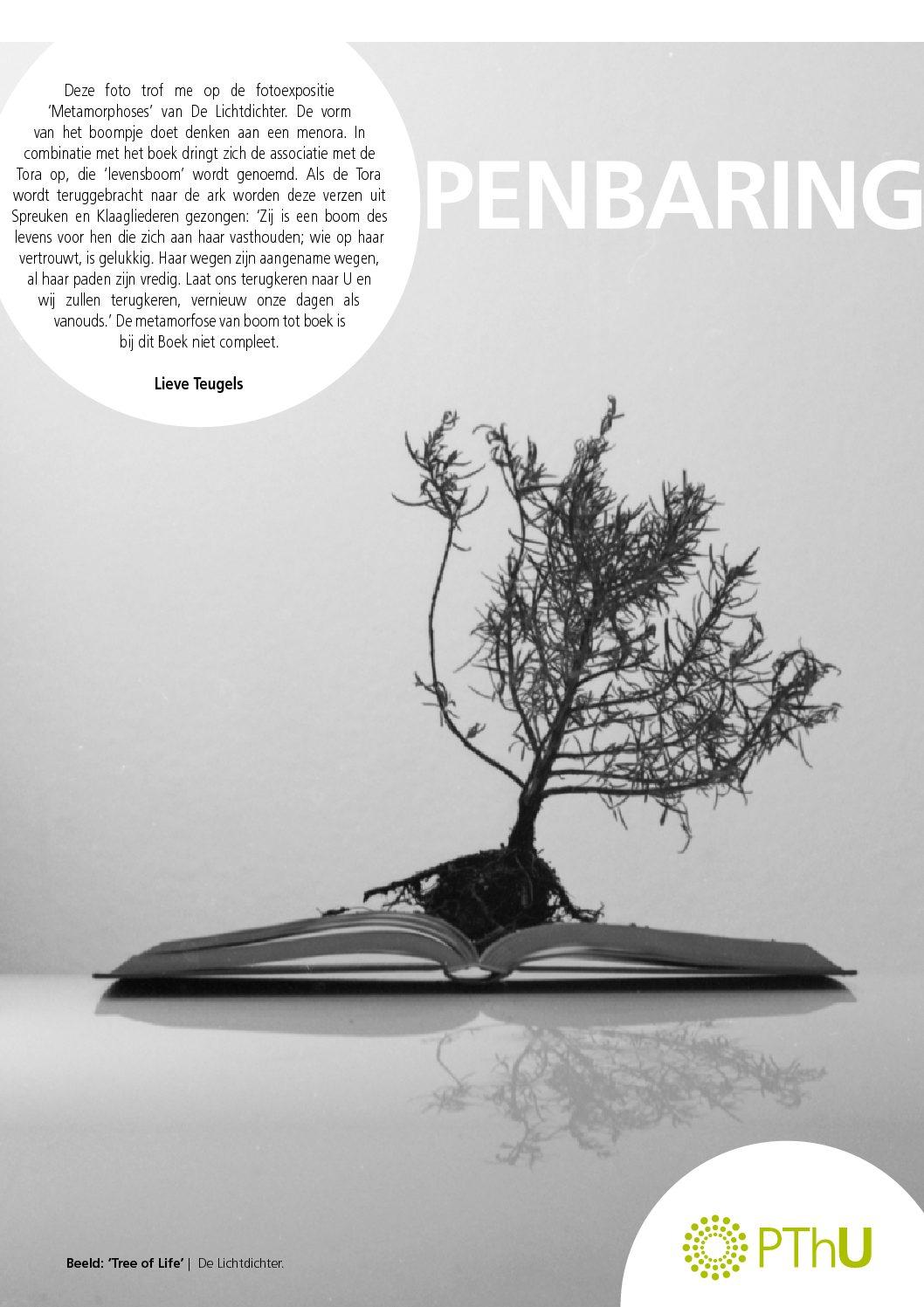 """Bijdrage aan rubriek """"Openbaring"""" van PThUnie, maart 2018"""